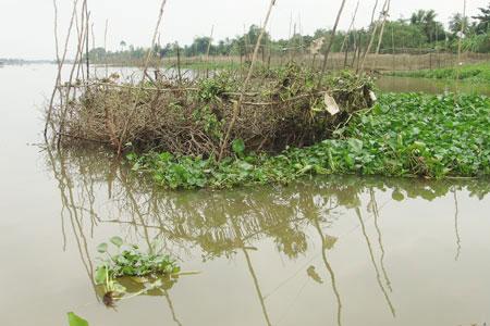 Thẩm mỹ viện Cát Tường và những vụ ném xác xuống sông ghê rợn
