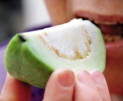 Mỗi ngày ăn một trái ổi sẽ không cần gặp bác sĩ