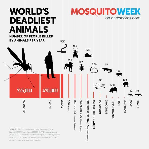 Tại sao lúc nào muỗi cũng đốt bạn thay vì người bên cạnh? - Ảnh 6.