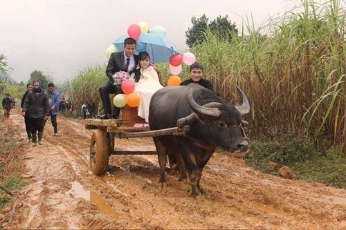 Xe hoa lạ ở Nghệ An khiến người đi đường không khỏi kinh ngạc - Ảnh 2.