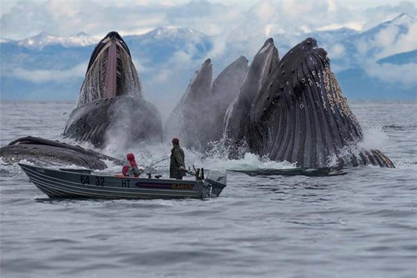 Hội chứng sợ biển: Nỗi ám ảnh kinh hoàng đến từ đại dương! - Ảnh 8.
