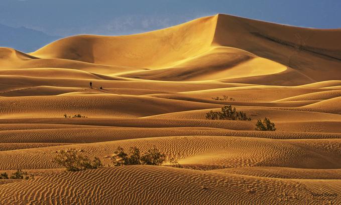 Kết quả hình ảnh cho sa mạc
