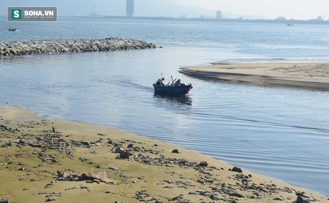 Biển Đà Nẵng bị đầu độc: Chọn biển hay chọn ngập úng? - Ảnh 2.