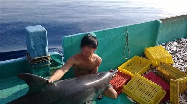 Hình ảnh nhóm thanh niên bắt và giết cá heo khiến dân mạng Việt bức xúc - Ảnh 3.