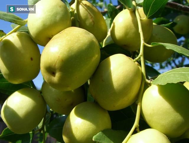 6 trái cây luôn có sẵn ngoài chợ cao tay giảm đường huyết, tốt cho cả người tiểu đường - Ảnh 2.