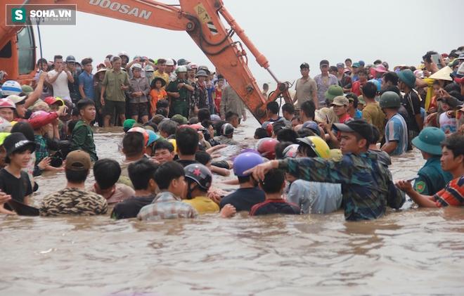 Giải cứu thành công cá voi khủng mắc cạn ở biển Nghệ An - Ảnh 2.