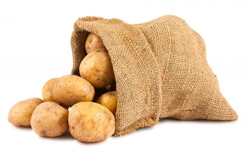 Khoai tây khi chuyển sang màu xanh sẽ hình thành độc chất thần kinh