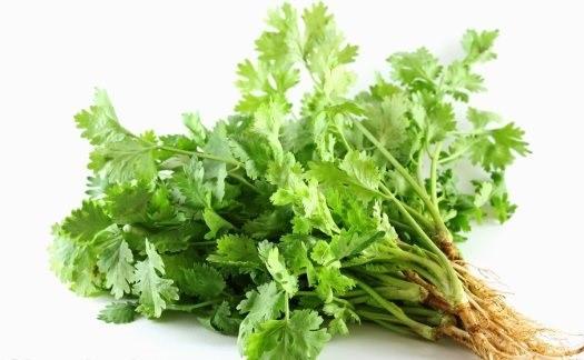 6 thực phẩm giúp cơ thể giải độc kim loại nặng - Ảnh 1.
