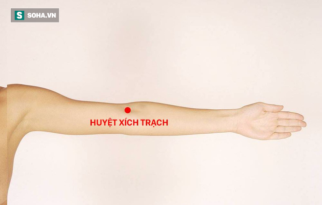 Vỗ cánh tay: Bài tập có sức mạnh kỳ lạ giúp chữa 7 loại bệnh - Ảnh 7.