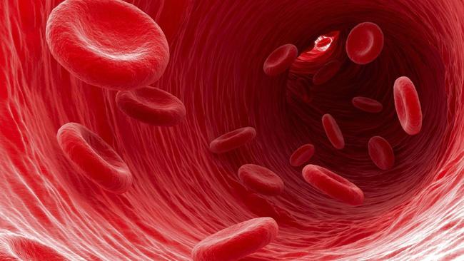 Đau đầu và sốt, dấu hiệu của bệnh lây lan nhanh và dễ tử vong - Ảnh 1.