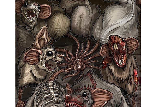 Vua chuột - hiện tượng... kinh dị hiếm gặp và nguy hiểm của loài động vật ai cũng sợ - Ảnh 2.