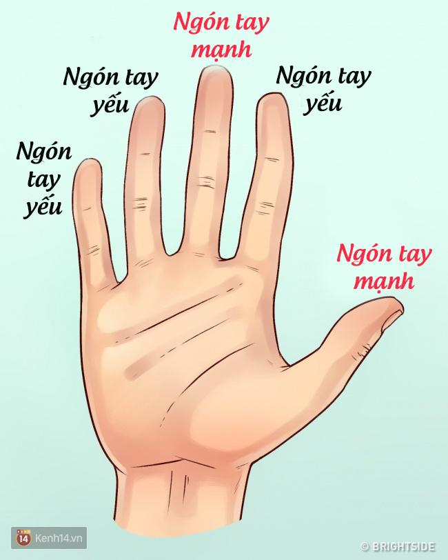 Nhìn ngay vào bàn tay để biết điểm mạnh và điểm yếu của bạn - Ảnh 2.