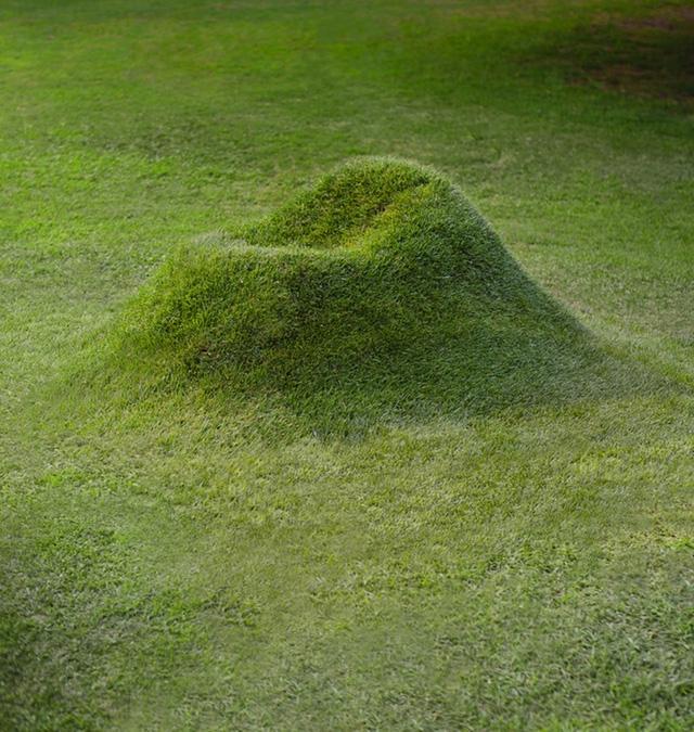 Nếu đã chán trồng cây cảnh trong vườn thì dự án này sẽ cho phép bạn trồng cả... ghế ngồi - Ảnh 2.