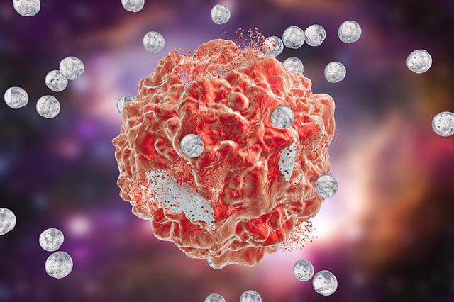 Các nhà khoa học tình cờ phát hiện cách chữa ung thư có thể sớm đưa vào ứng dụng - Ảnh 2.
