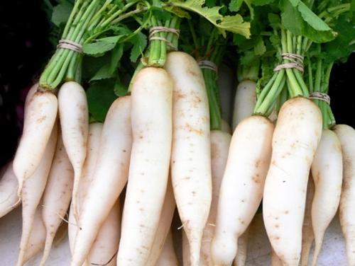 5 thực phẩm kỵ ăn với củ cải trắng vì dễ sinh bệnh - Ảnh 3.