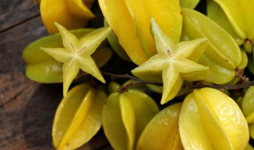 5 bài thuốc nổi tiếng chữa lở loét, viêm họng từ khế chua - Ảnh 3.