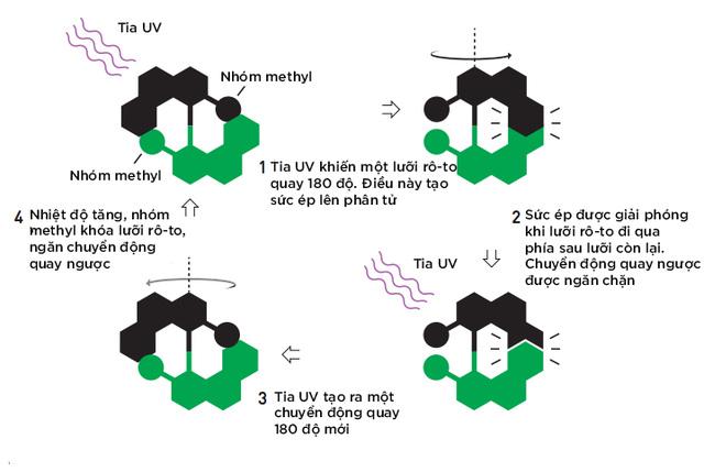 Ba nhà khoa học đoạt giải Nobel Hóa học 2016 đã chế tạo ra cỗ máy nhỏ nhất thế giới, kích cỡ phân tử như thế nào? - Ảnh 5.