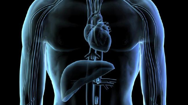 9 điều thực sự xảy ra bên trong cơ thể khi bạn ăn quá nhiều đường - Ảnh 6.