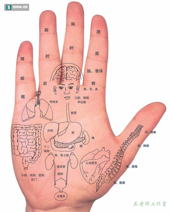Thú vị: Chỉ cần vỗ tay cũng giúp hỗ trợ chữa được nhiều loại bệnh - Ảnh 2.