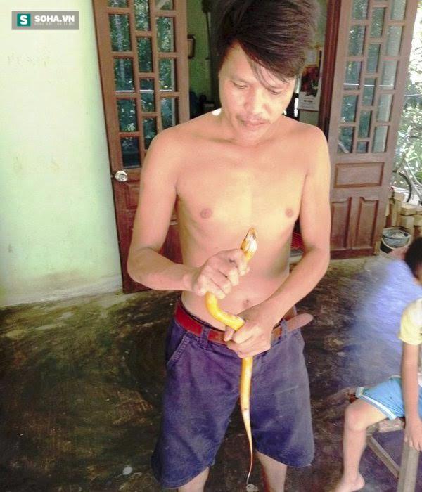 Người dân bắt được con lươn có 3 màu trắng, đen, vàng kỳ lạ ở Huế - Ảnh 3.