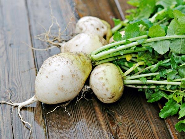 Ngoài trứng và sữa, bố mẹ nhất định phải cho con ăn các loại rau kích thích chiều cao - Ảnh 3.
