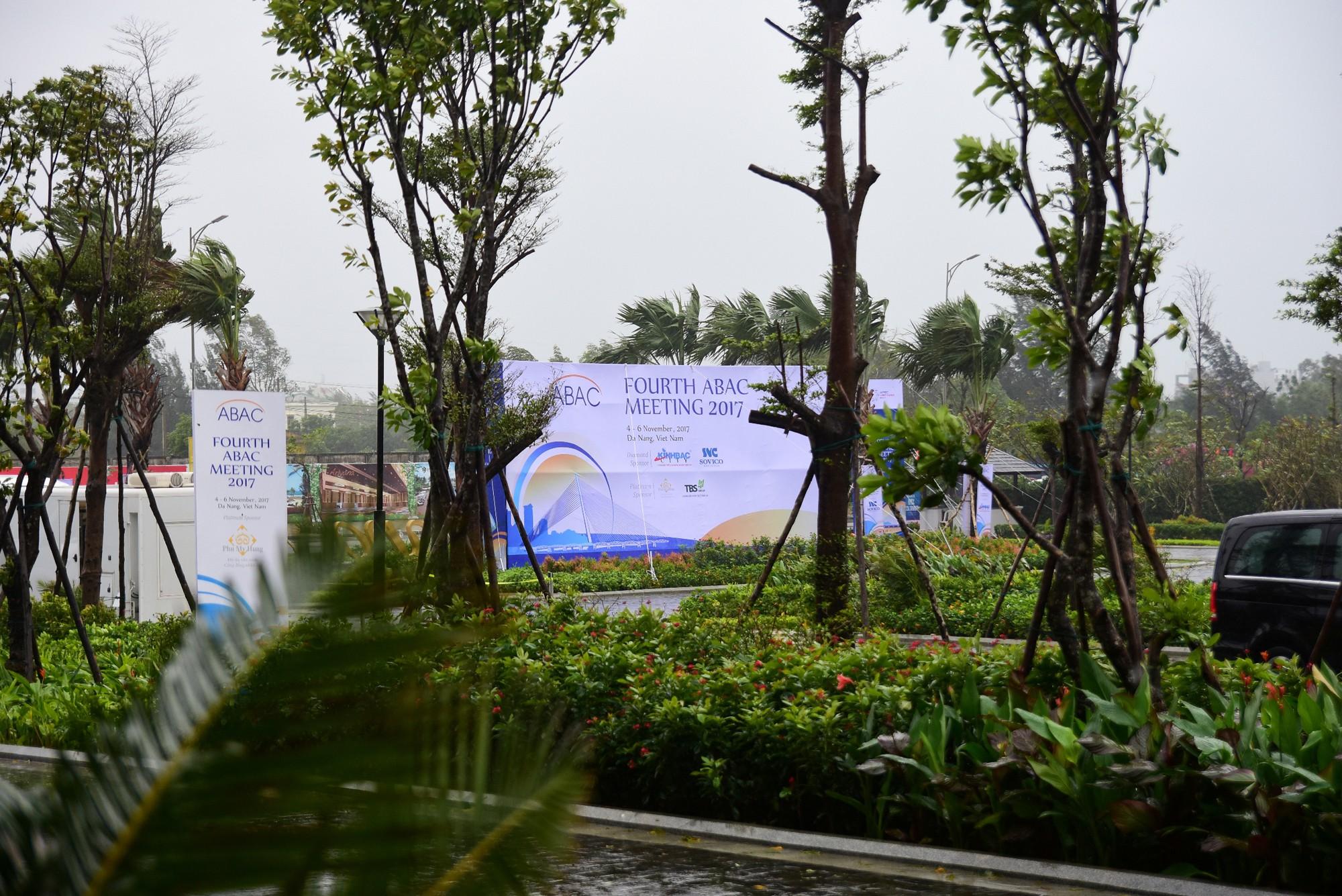 [PHOTO ESSAY] Toàn cảnh Đà Nẵng: Chạy đua với bão chuẩn bị cho khai mạc APEC - Ảnh 8.