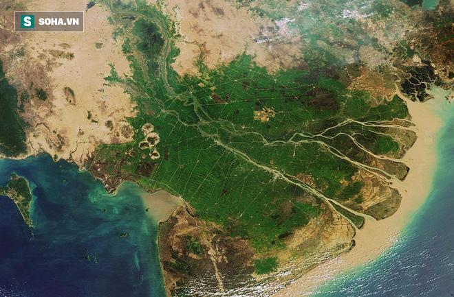Cảnh nuốt nhà đáng sợ ngay tại Việt Nam, Nhật và Hà Lan đang phối hợp xử lý - Ảnh 1.