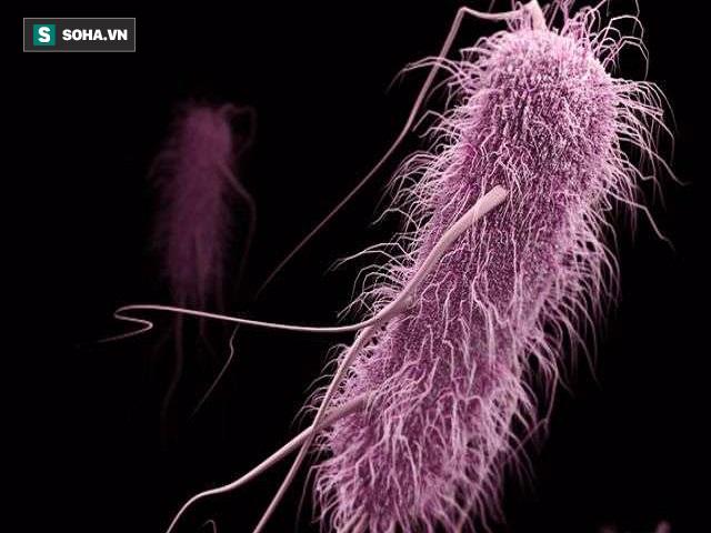 Giật mình tác hại của lạm dụng kháng sinh: Vi khuẩn kháng thuốc chưa phải điều tệ nhất! - Ảnh 1.