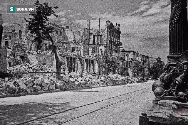 Tù binh bị đồng đội căm hận và báo thù đến chết, 60 năm sau, phát hiện từ một gốc cây gây chấn động nước Anh! - Ảnh 1.
