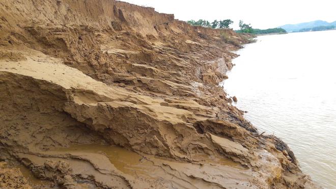 Video: Hàng trăm nghìn mét đất bị sông Lam nuốt chửng từng ngày - Ảnh 10.