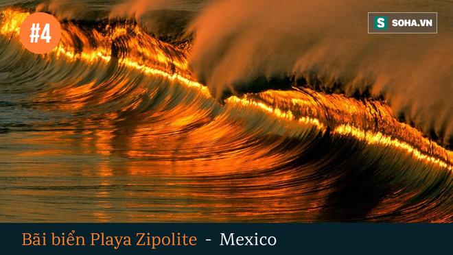 6 vùng biển tử thần, đáng sợ nhất trên thế giới - Ảnh 4.