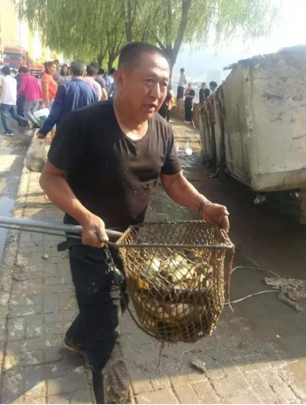 Xe chở cá bị lật, người dân hò nhau đi cướp - Ảnh 5.