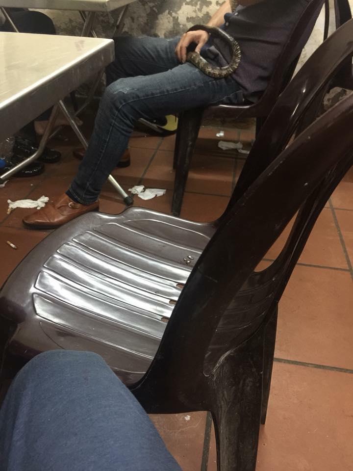 Độc Lạ: Người đàn ông mang rắn đi nhậu khiến khách hàng vừa sợ vừa tò mò