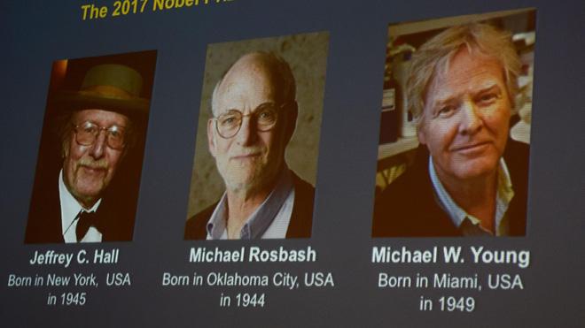 Nobel Y học và điểm huyệt theo giờ của phái Võ Đang - Ảnh 1.