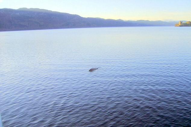 Bằng chứng kỷ lục nghi xuất hiện quái vật hồ Loch Ness: Bí ẩn hơn 200 năm được giải mã? - Ảnh 3.