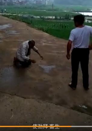 Cha già 90 tuổi quỳ rạp lạy con, bị mắng là súc sinh - Ảnh 1.