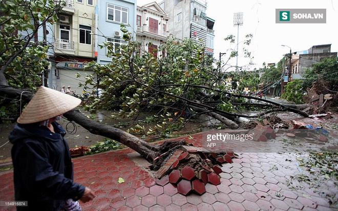 Sự nguy hiểm khôn lường của những cơn bão cuối năm đổ bộ vào Việt Nam 1