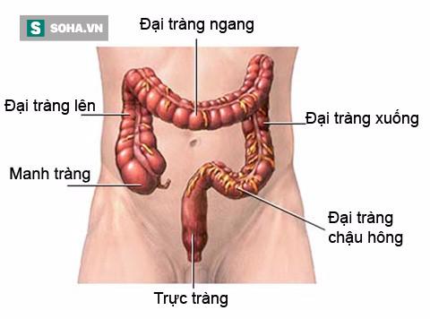TS Nguyễn Thị Minh Thái: Người ngoài nghe ung thư đã sợ, tôi nhờ bí quyết này để vượt qua - Ảnh 1.