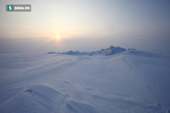 Phát hiện sinh vật kỳ dị ở Nam Cực: Khoa học phải nghĩ lại việc tìm sự sống ngoài Trái Đất - Ảnh 1.