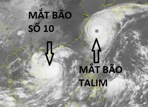 Tại sao bão số 10 đổ bộ Việt Nam lại thần tốc và hung hãn đến vậy? - ảnh 1