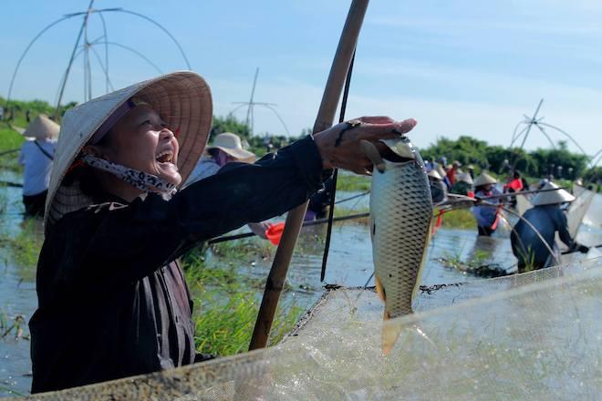 Cả làng hú lớn, tay nơm tay lưới ào xuống vực đánh cá Đồng Hoa - Ảnh 7.