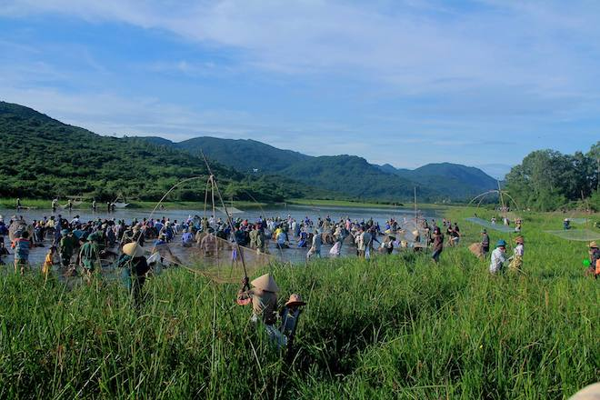 Cả làng hú lớn, tay nơm tay lưới ào xuống vực đánh cá Đồng Hoa - Ảnh 2.