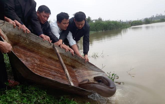 Người dân góp tiền mua cá chình khủng dài cả mét để phóng sinh - Ảnh 6.