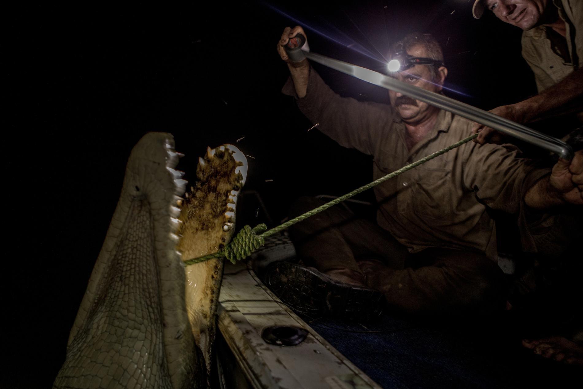 Săn cá sấu khổng lồ trên con thuyền vỏn vẹn dài 4m: Khi cuộc chiến thực sự bắt đầu! - Ảnh 11.