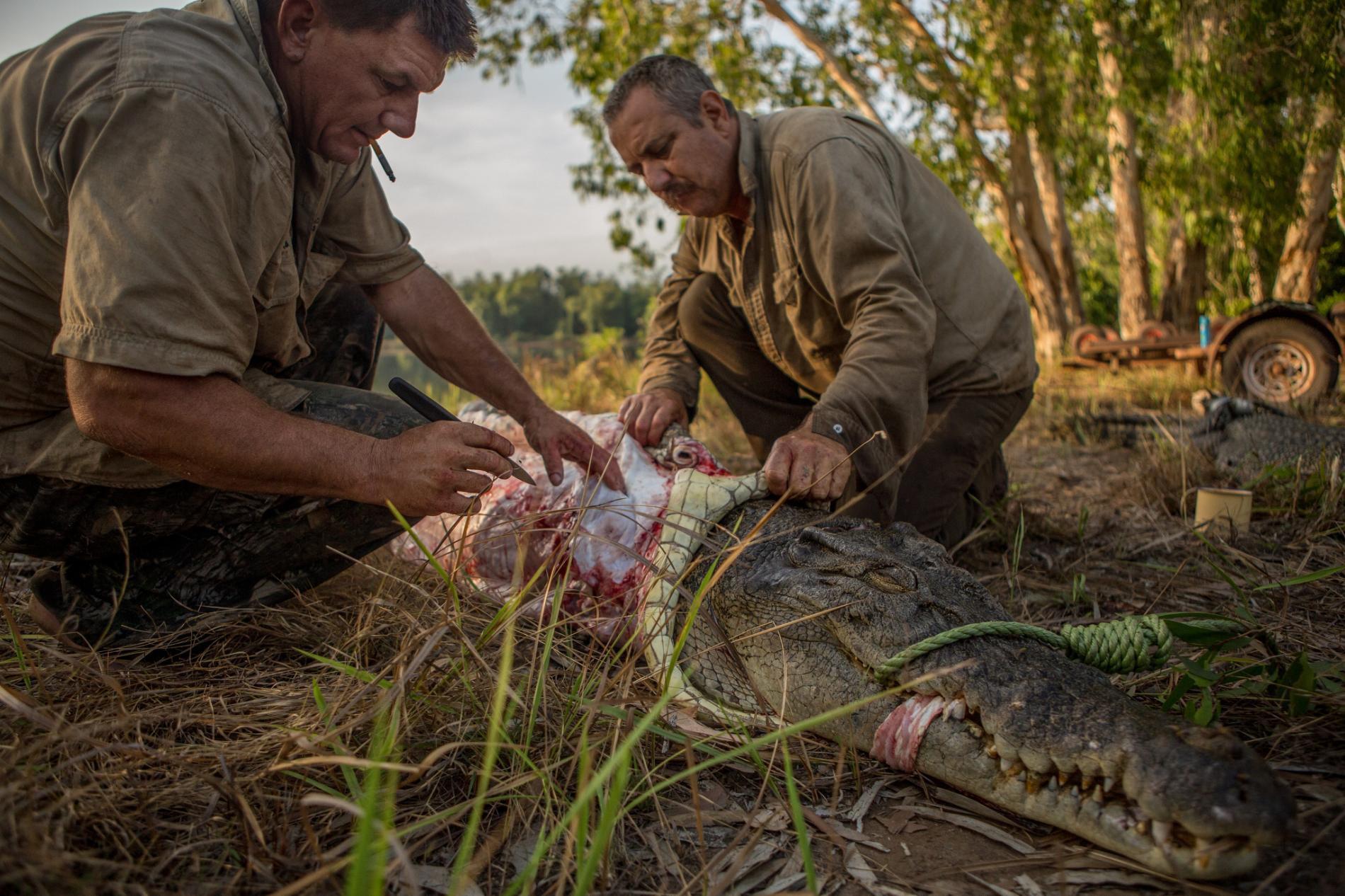 Săn cá sấu khổng lồ trên con thuyền vỏn vẹn dài 4m: Khi cuộc chiến thực sự bắt đầu! - Ảnh 12.