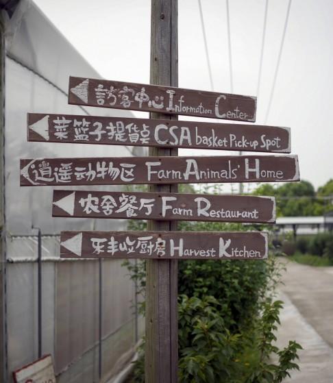 Những mô hình trang trại đáng mơ ước của nền nông nghiệp hữu cơ ở Trung Quốc - Ảnh 1.