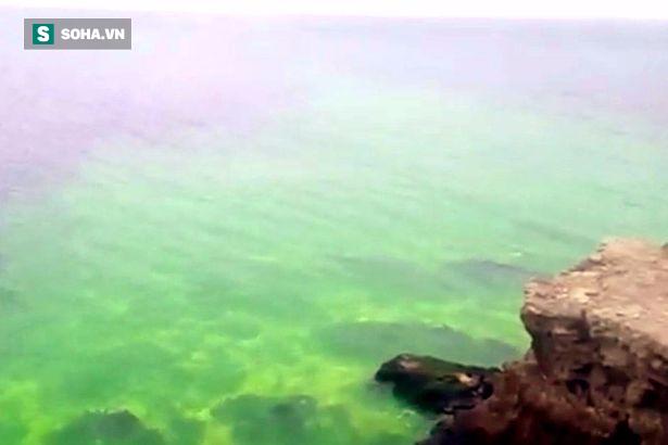 Biển Đen đột nhiên chuyển màu xanh dạ quang khiến nhiều người lo ngại - Ảnh 1.