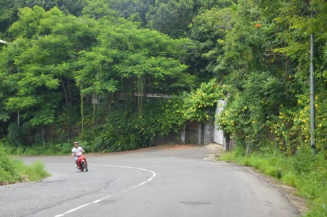 Chủ tịch Đà Nẵng kể chuyện đi điều tra đường dây cán bộ ăn đất nghĩa trang - Ảnh 2.