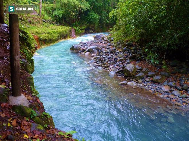 Bí ẩn độc nhất vô nhị của con sông ở Trung Mỹ cuối cùng đã được giải mã - Ảnh 1.