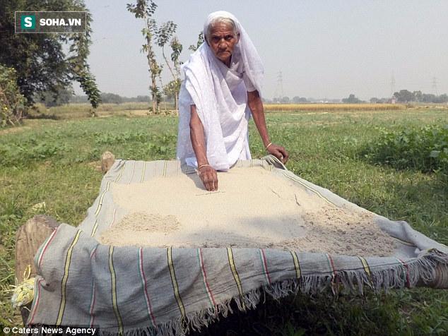 Hơn 60 năm ăn cát và cái kết làm nhiều người không tin vào tai mình của bà cụ gần 80 tuổi - Ảnh 1.